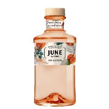 G'Vine June Gin Peach 0,7 30%