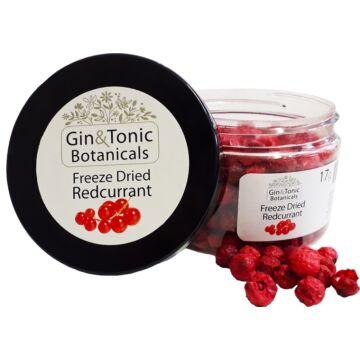 Gin Tonik fűszer kis tégelyben liofilizált ribizli 17 gr