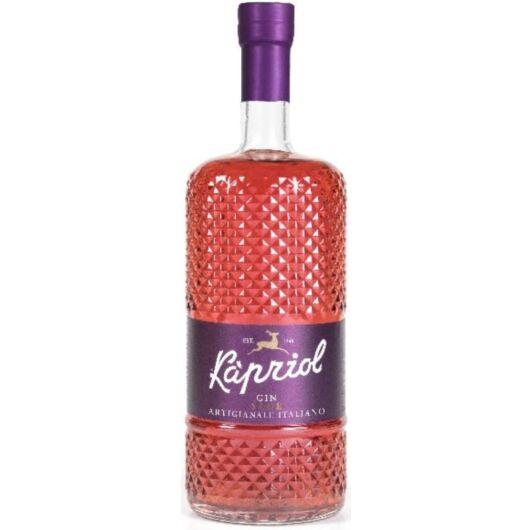 Kapriol Sloe gin - 0,7L (28,7%)